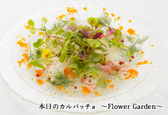 本日のカルパッチョ~Flower Garden~